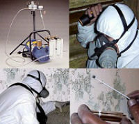 MSP Mold Inspection and remediation