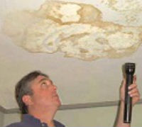 MSP Ceiling Mold Inspection