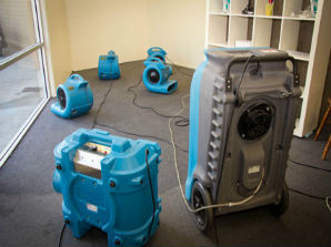 Master Service Pro Carpet Drying