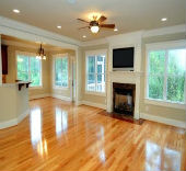 Master Service Pro Hardwood Floor Cleaning